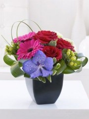 Rose, Gerbera and Vanda Orchid Arrangement