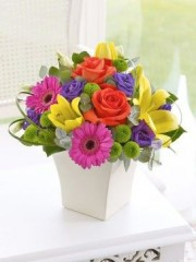 Vibrant Exquisite Arrangment
